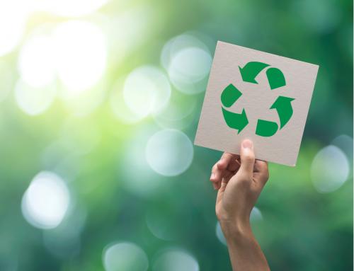 Más verde, más sostenible