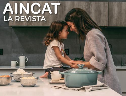 Revista Aincat